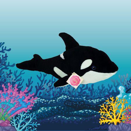 Fantastische Unterwasserwelt